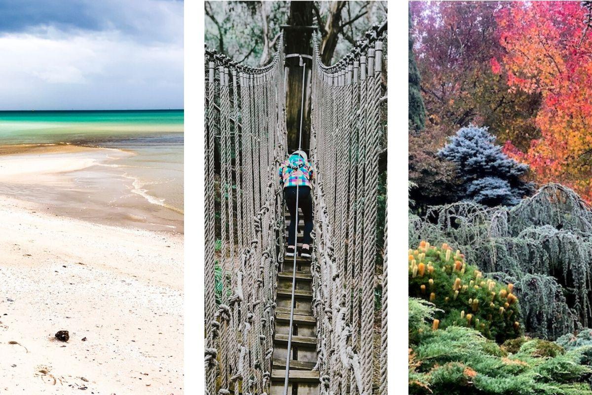 Image: Enchanted garden / McCrae Beach via Take Me To Australia
